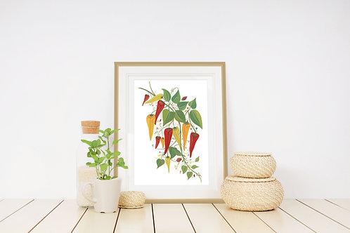 Pretty Chillies Art Print