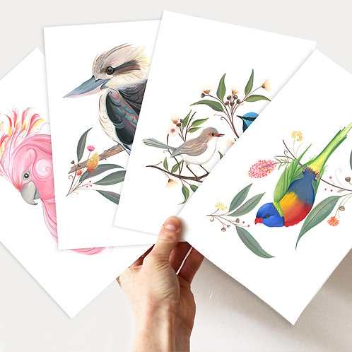 A5/A4 Aussie Birds Art Print Bundle!