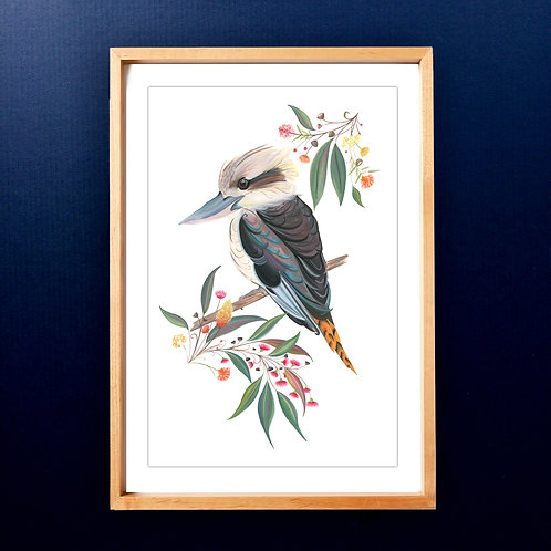 Limited edition Kookaburra Jack in the Leaves A3 Art Print