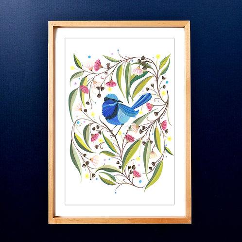 Limited edition Splendid Fairy Wren (Rainbow Wren) A3 Art Print