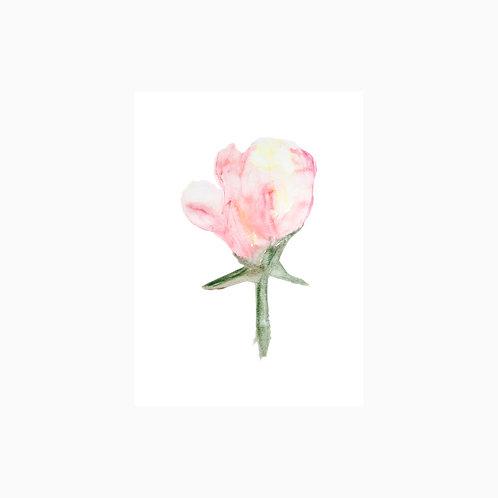 Fine Art Print | Blume Aquarell