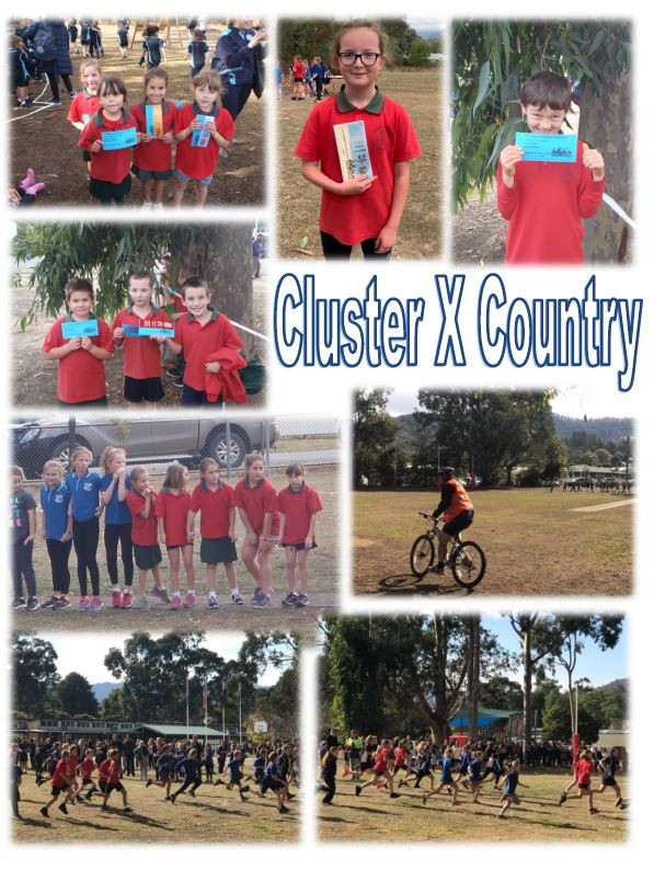 Cluster Cross Country.