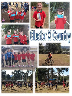 Cluster Cross Country.JPG