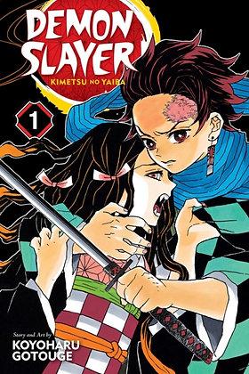Demon Slayer Vol 01