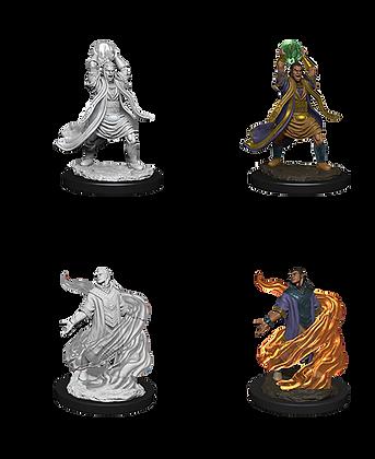 Elf Sorcerer ( Male ) - D&D Nolzurs Marvelous Miniatures