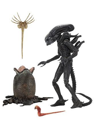 Aliens 40th Anniversary - Big Chap - Neca Figure