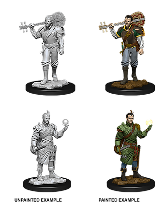 Half Elf Bard ( Male ) - D&D Nolzurs Marvelous Miniatures