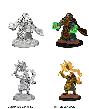 Dwarf Cleric ( Female ) - D&D Nolzurs Marvelous Miniatures