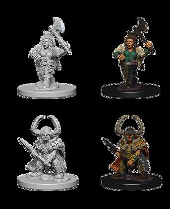 Dwarf Barbarian ( Female ) - D&D Nolzurs Marvelous Miniatures