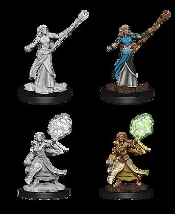 Elf Sorcerer - D&D Nolzurs Marvelous Miniatures