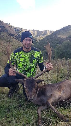 Fallow Deer and hunter.jpg