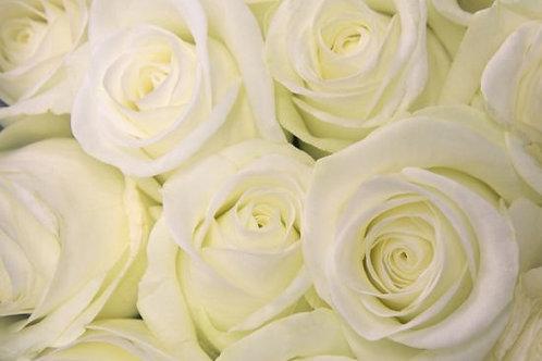 Bouquet de 20 roses blanches