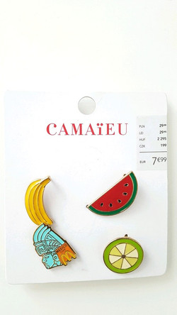 Pins Camaïeu