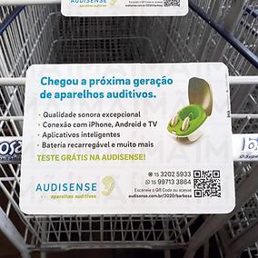 Audisense-1.png