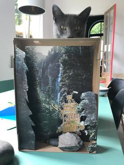 work in progress 1e schet sbox met kater
