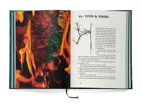 Kinderboek Torre Illustratie Bern Veenhof Auteur Annekarijn Overduin Illustratie vuur Takkenletter Kinderboek De toch niet zo eenzame tocht van Torre Kinderboek Torre 4.jpg