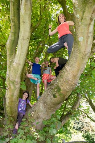 3675 kid tree.jpg