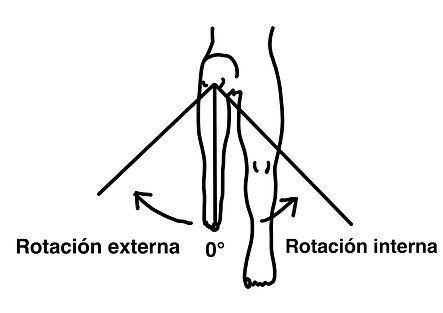 Rotación_L_I_En_A_Cadera.jpg