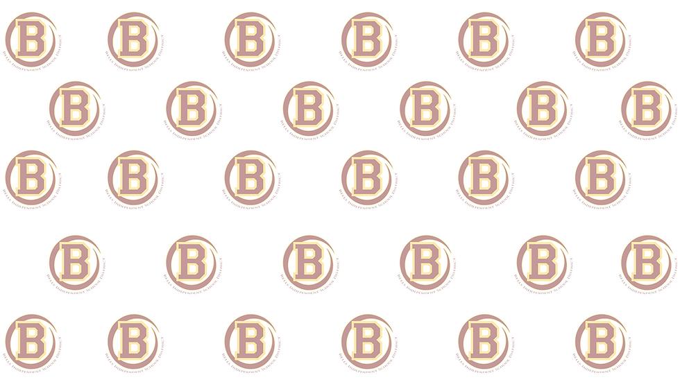 BISD Web Background.png