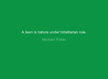 How Lawns Kill Trees