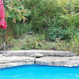 Stone-feature-by-pools-edge.jpg