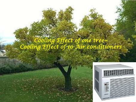 The Air-Conditioning Factor