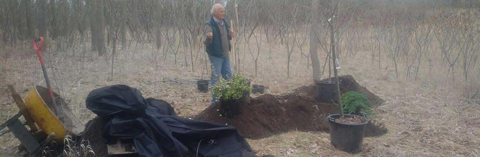 Arboretum Pocket Woodland Installation SPring 2018