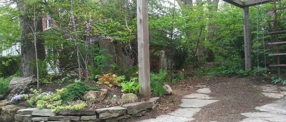 Pocket Woodlands Design, early spring