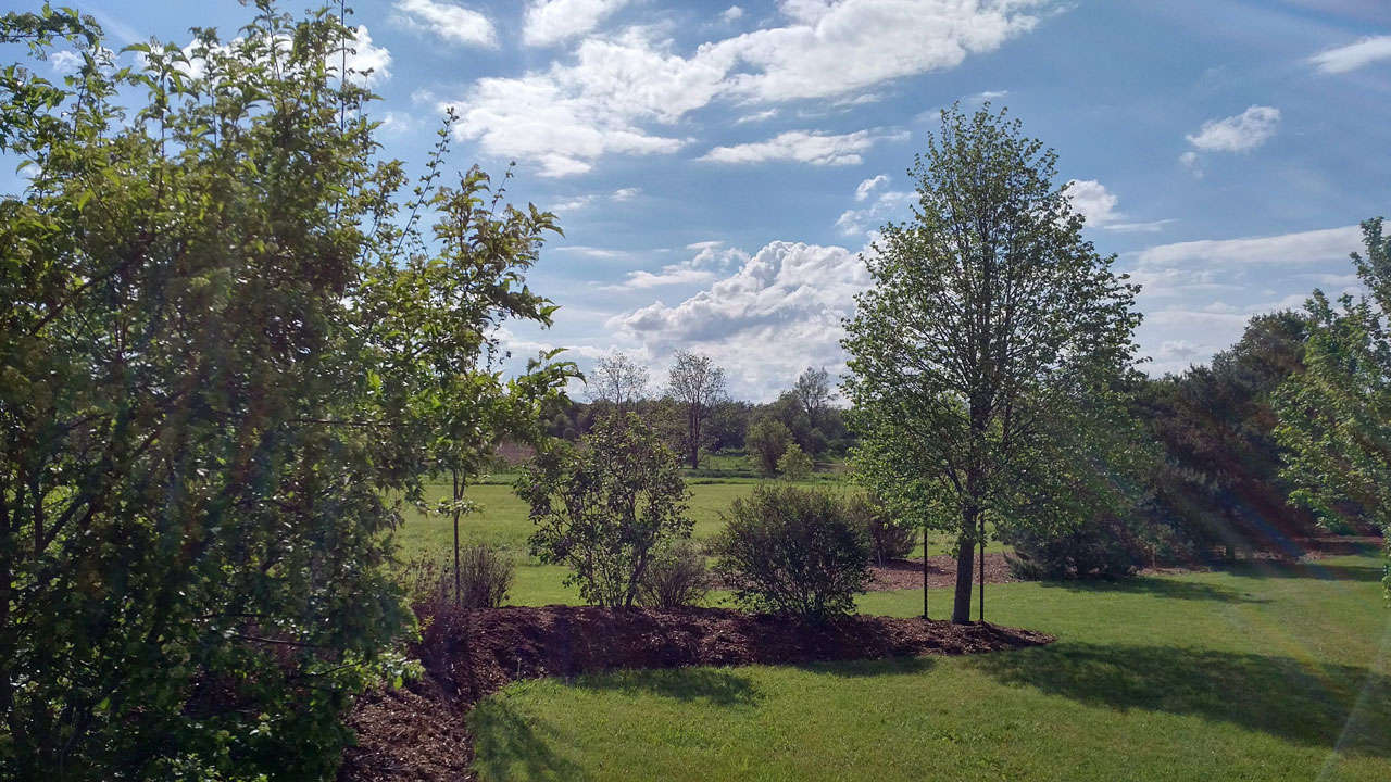 Pocket-Woodlands-3-Eden-Mills.jpg