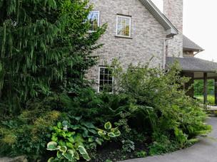 Guelph Residential