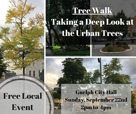 Tree Walk.jpeg