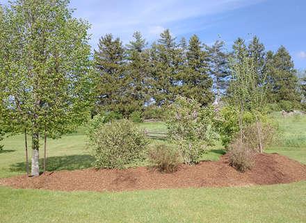 Pocket-Woodlands-4-Eden-Mills.jpg