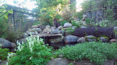 Guelph Residential Woodland Garden