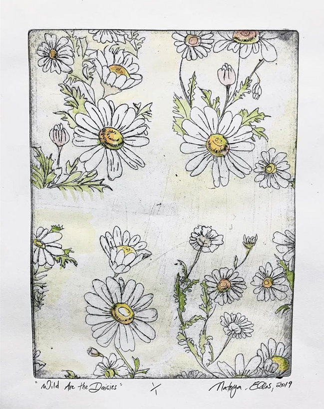 Wild are the Daisies