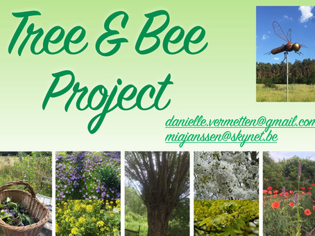 Tree&Bee