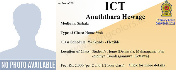 ICT Home Visit Local OLevel Tuition in C