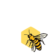 ZingBee Logo_clipped_rev_2.png