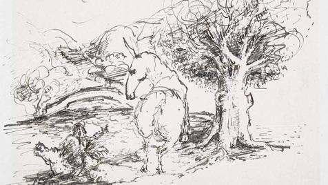 0008 - L'âne chargé d'éponges et l'âne c