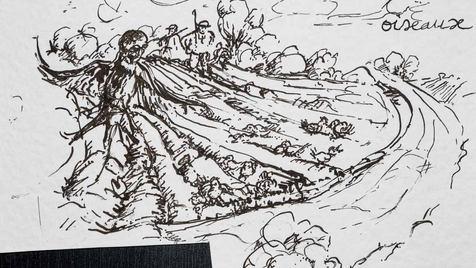 0017 - L'Hirondelle et les petits Oiseau