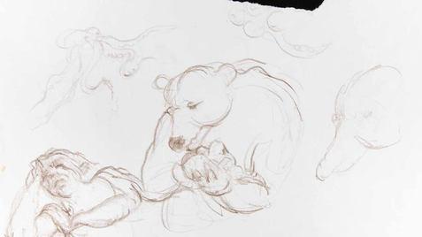 0031 - L'Ours et l'Amateur des jardins -