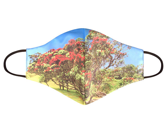 Mooney Mask - 'Pohutukawa Island'