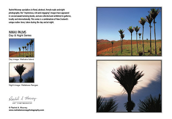 Card - 'Nikau Palms'