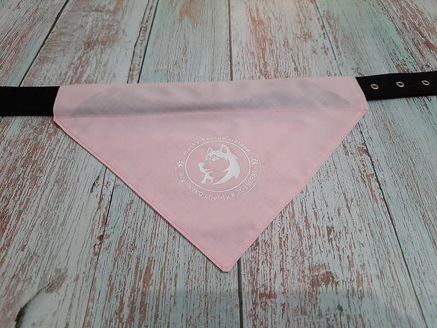 dog-bandana-pink.jpg
