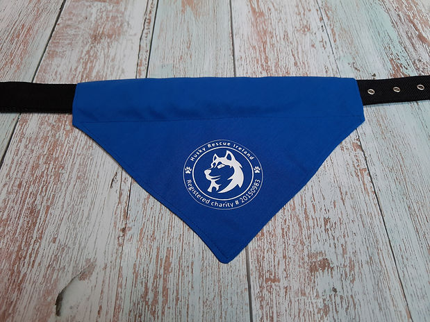 Dog-bandana-blue.jpg
