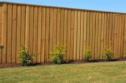 גדר עץ אורן