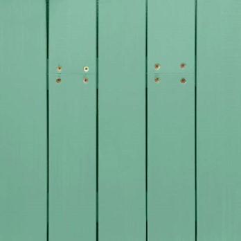 celery-green-ns-1630