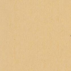 cashmere-c-130