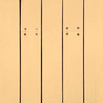 bur-reeds-ns-1609