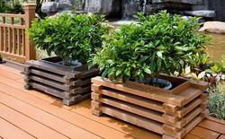 אדניות עץ מעוצבות