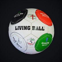 Living-Ball-Donates-Over-3000-Soccer-Bal